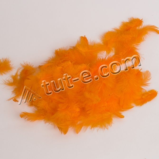 Перья светло- оранжевые