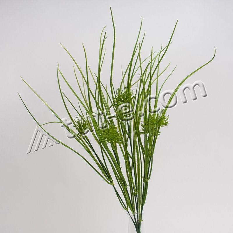 Травка дикий лук