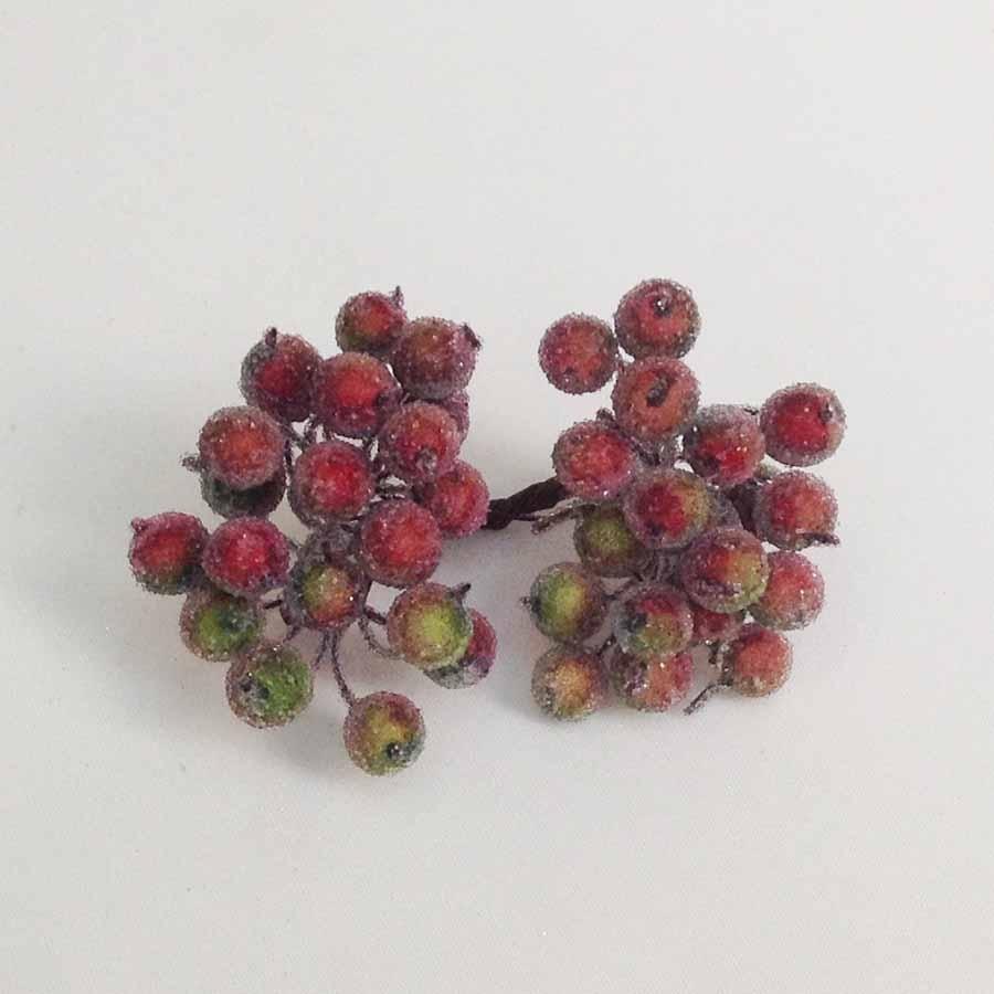 Ягодка калина в сахаре красно-оливковая