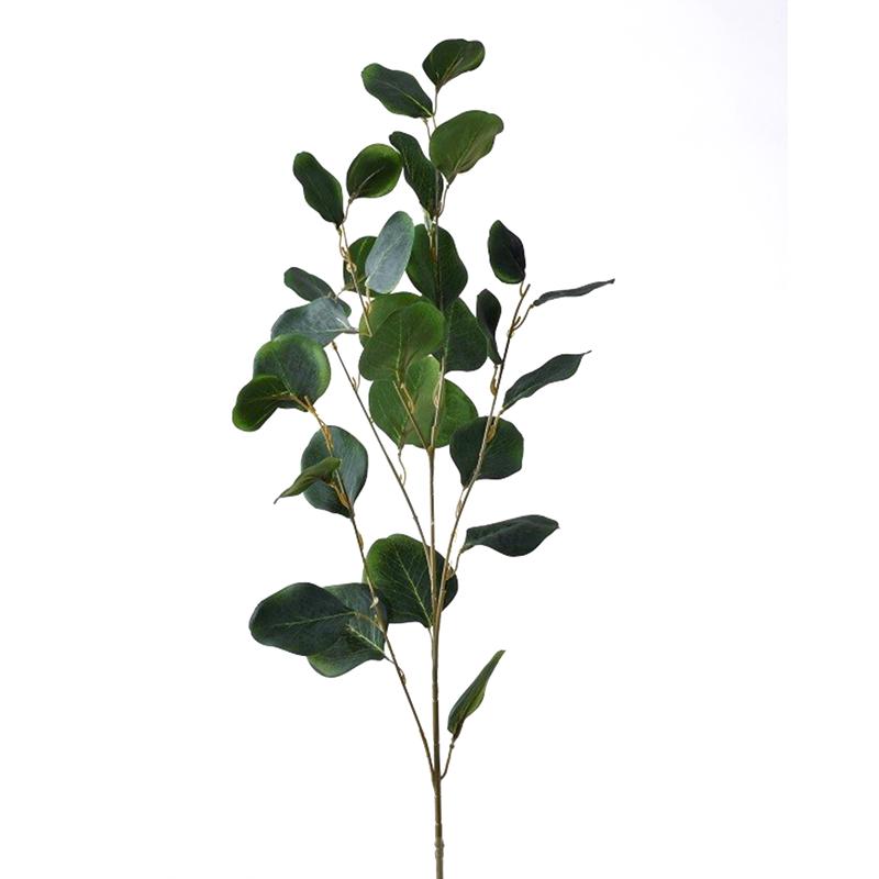 Ветка эвкалипта зеленая 90см